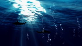 Animation of underwater on dark background. Video collection stock video footage
