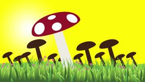 Animation with various mushrooms in the field.  stock footage