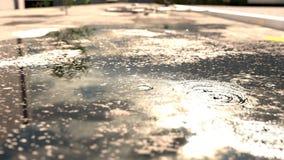 Animation von den Regentropfen, die auf Pfütze vor unscharfem Sonnenschein fallen stock footage