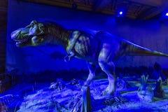Free Animatronic Dinosaur Display At The, Natural History Museum, London Royalty Free Stock Photography - 73573527