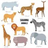 Animaux africains d'éléphant de la savane, rhinocéros, girafe, guépard, zèbre, lion, hippopotame Illustration de vecteur Photos libres de droits