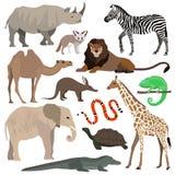 Animaux africains réglés Éléphant, girafe, buffle, hippopotame, rhinocéros, lion, guépard, antilope, autruche, hyène, lémur, gori Images libres de droits