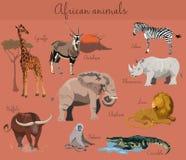 Animaux africains sauvages réglés avec des éléments de nature Photos stock