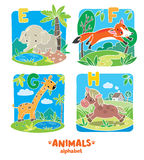 Animaux alphabet ou ABC Photos stock