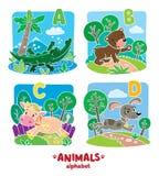 Animaux alphabet ou ABC Images stock