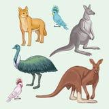 Animaux australiens Photo libre de droits
