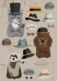 Animaux dans des chapeaux Photo libre de droits