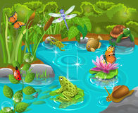 Animaux dans l'étang Photo stock
