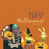 Animaux dans le costume de Halloween illustration stock