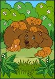 Animaux de bande dessinée pour des enfants Ours de papa Image stock