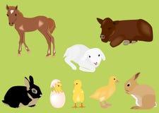 Animaux de chéri de source de Pâques illustration libre de droits