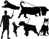Animaux de chien Photographie stock