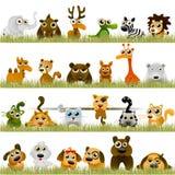 Animaux de dessin animé Images stock