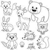 Animaux de forêt Tronçon de Fox, d'ours, de raccon, de lièvres, de cerfs communs, de hibou, de hérisson, d'écureuil, d'agaric et  Photographie stock libre de droits