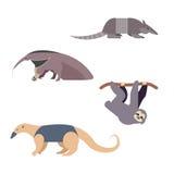 Animaux de l'Amérique du Sud Illustration de Vecteur