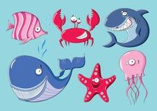 Animaux de mer Photo stock