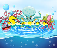 Animaux de mer dans l'océan Photos stock