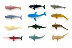 Animaux de mer (requins et baleines) Image stock