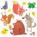 Animaux de région boisée de bande dessinée réglés Dirigez l'illustration du pigeon, du renard, de la grenouille, de l'écureuil, d illustration stock