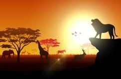 Animaux de silhouette sur des savannas pendant l'après-midi illustration libre de droits