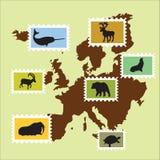 Animaux européens Photo libre de droits