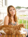 Animaux familiers photographie stock