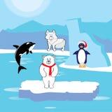 Animaux l'arctique (zone) Images stock