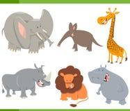 Animaux mignons de safari réglés Image libre de droits
