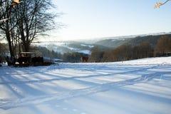 Animaux pendant l'hiver Photos stock