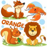 Animaux sauvages de couleur orange Images stock