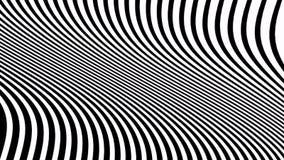 Animazione in bianco e nero psichedelica con le bande ondulate Video ottico di arte video d archivio