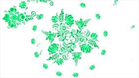 Animazione dei fiori variopinti su fondo bianco Cicli senza cuciture stock footage