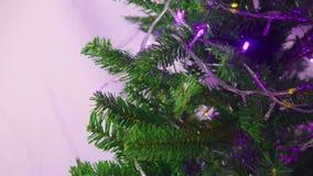 Animazione del Natale con abete e l'ornamento stock footage