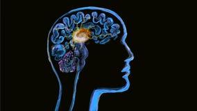 Animazione dell'acquerello di attività del neurone del cervello umano 2D illustrazione di stock