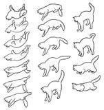 Animazione di caduta del gatto illustrazione vettoriale