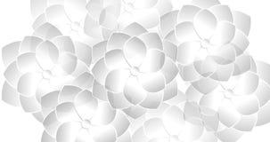 Animering av cirkla för modell för blomma geometriskt royaltyfri illustrationer