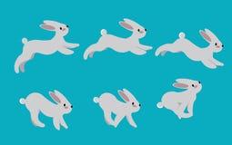 Animeringcirkulering av att köra en hare Kaninrörelse poserar körning Royaltyfria Bilder
