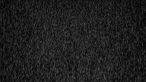 Animowany ciężki opady deszczu na czarnym tle 4K ilustracja wektor
