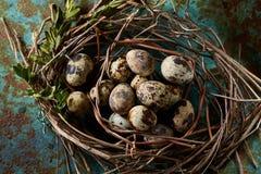 Aninhe com os ovos de codorniz no fundo azul, vista superior, close-up, foco seletivo Imagens de Stock