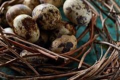 Aninhe com os ovos de codorniz no fundo azul, vista superior, close-up, foco seletivo Foto de Stock