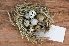 Aninhe com ovos de codorniz e papel vazio velho no Imagens de Stock