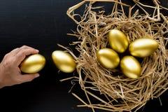 Aninhe completamente dos ovos dourados, homem que guarda um ovo dourado na parte traseira do preto Imagem de Stock