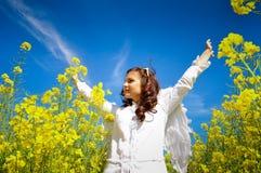 aniołów skrzydła Zdjęcia Stock