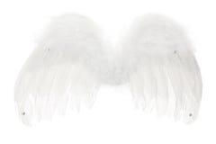 aniołów skrzydła Obraz Royalty Free