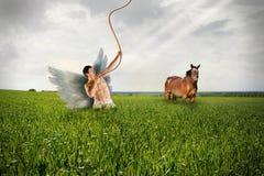 Anioł i koń na Grassfield Zdjęcia Royalty Free