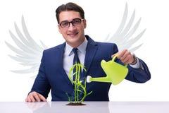 Anioła inwestora przyszłości narastający zyski odizolowywający na bielu Fotografia Stock