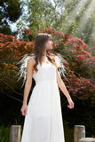 anioła ogród Obraz Stock