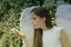 Anioł dziewczyna Fotografia Royalty Free