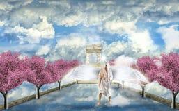 anioł w niebie Obraz Stock