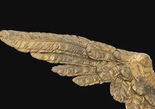 Anioła skrzydło Zdjęcia Stock